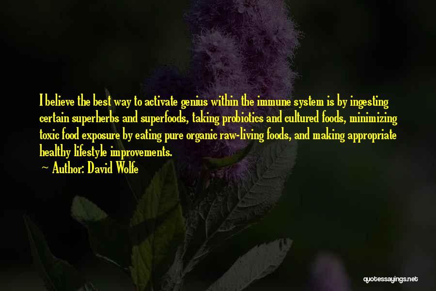 David Wolfe Quotes 1738017