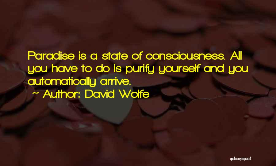 David Wolfe Quotes 1780081