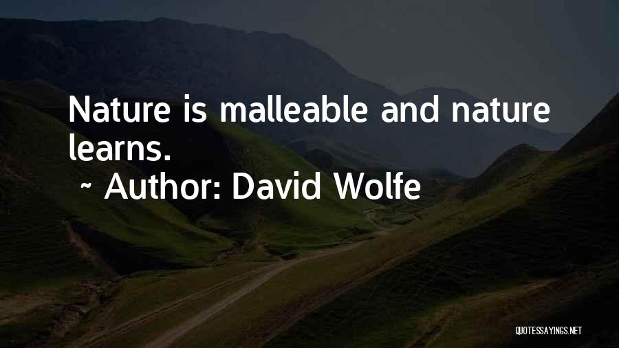 David Wolfe Quotes 1811894