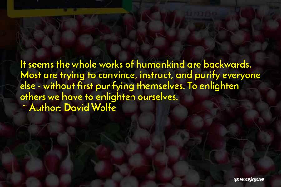 David Wolfe Quotes 1887357