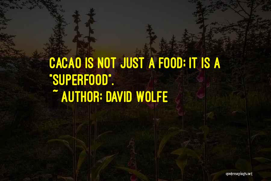 David Wolfe Quotes 2131747