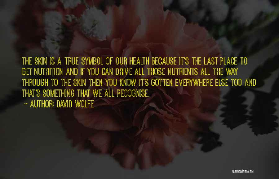 David Wolfe Quotes 390181
