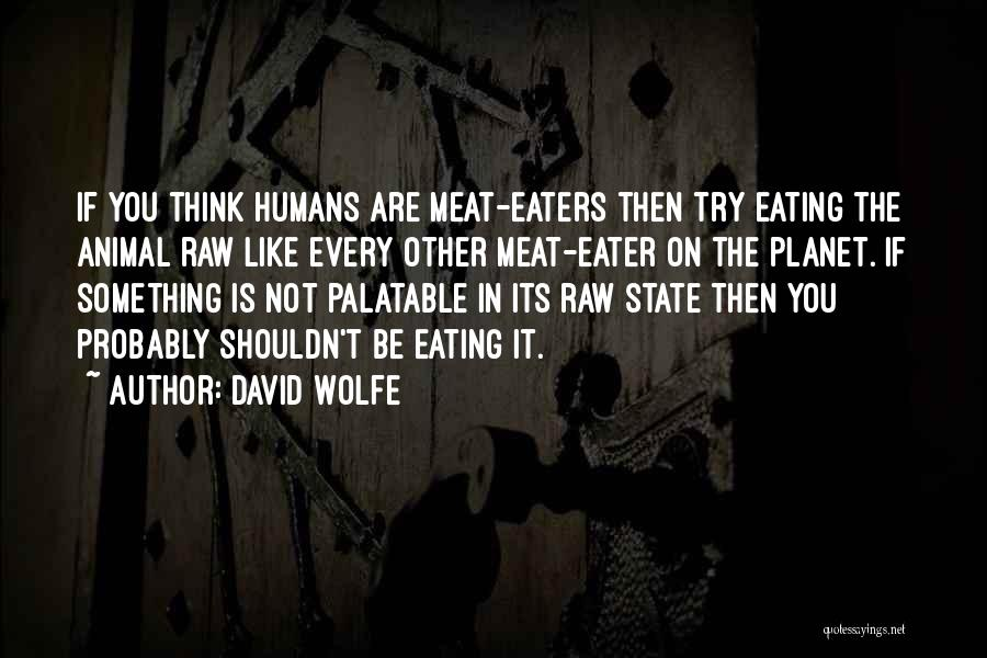 David Wolfe Quotes 411324