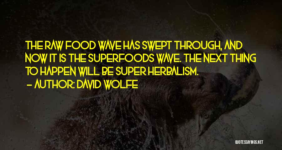 David Wolfe Quotes 521135
