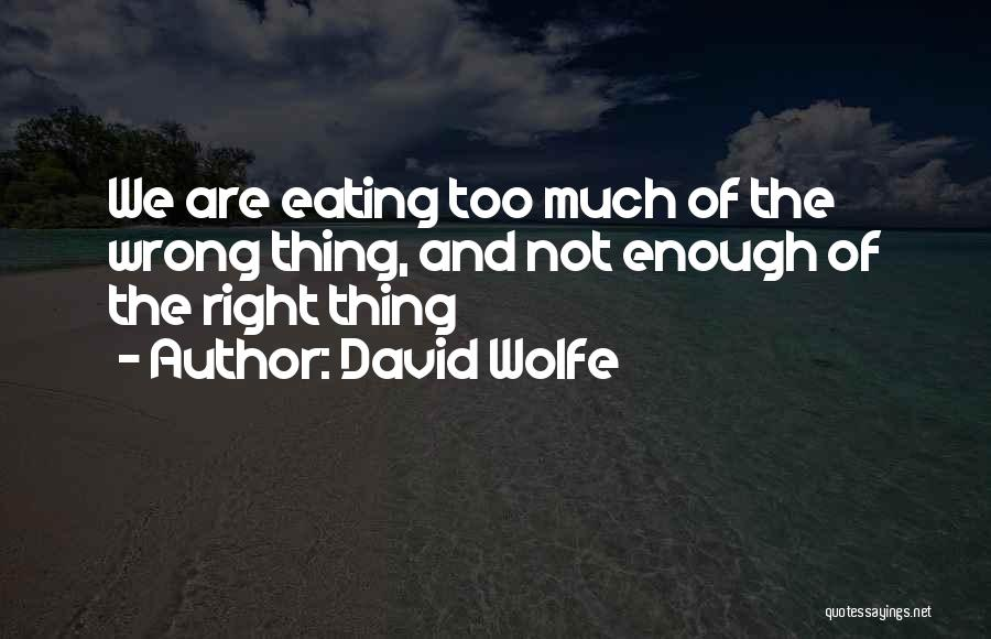 David Wolfe Quotes 563004