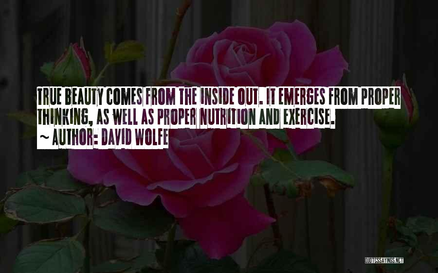 David Wolfe Quotes 653036