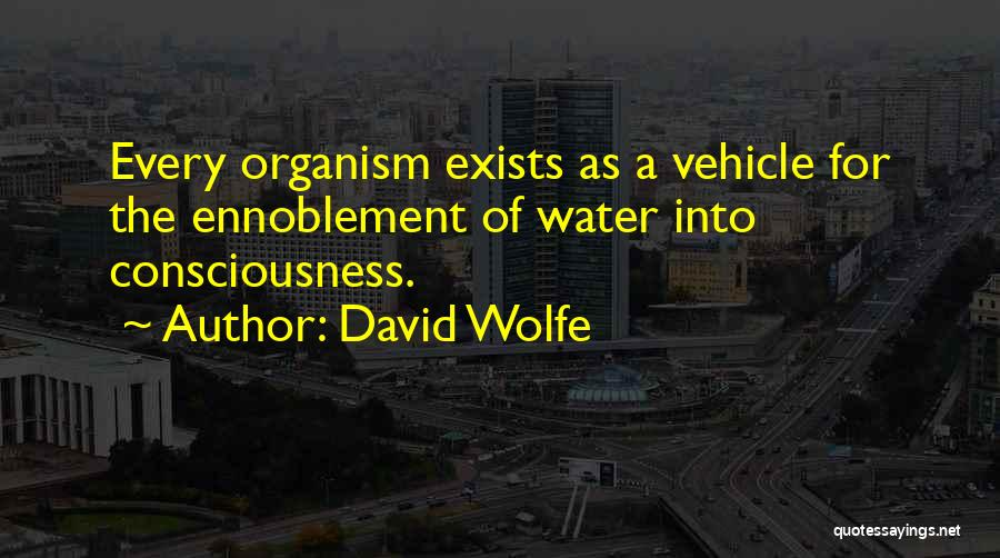 David Wolfe Quotes 661829
