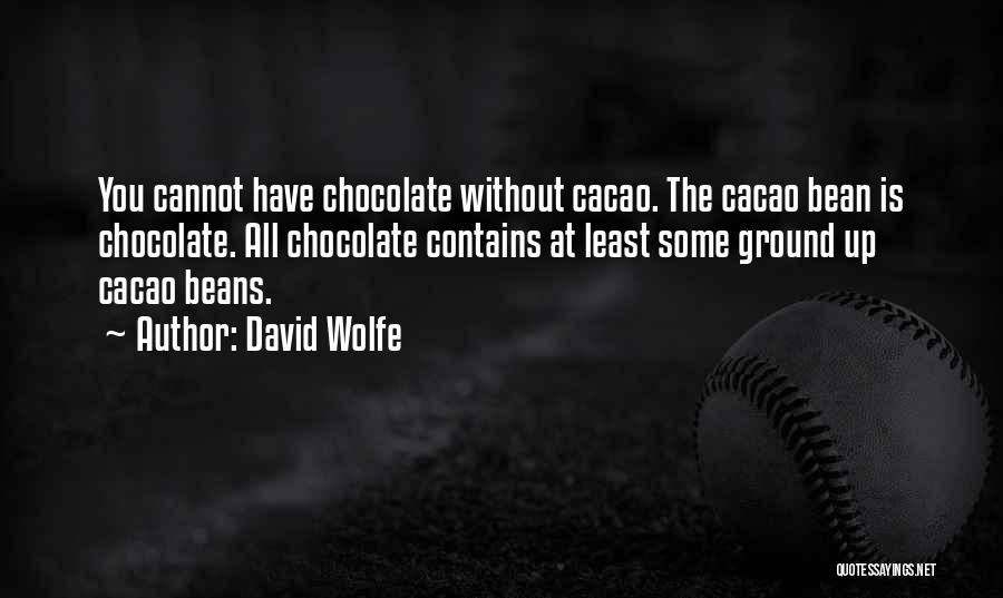 David Wolfe Quotes 845654