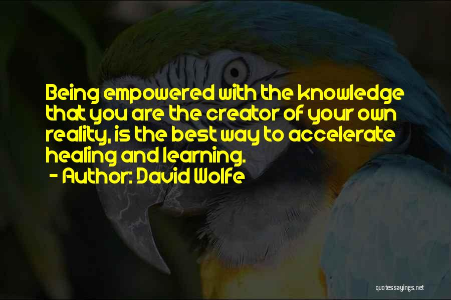 David Wolfe Quotes 855747