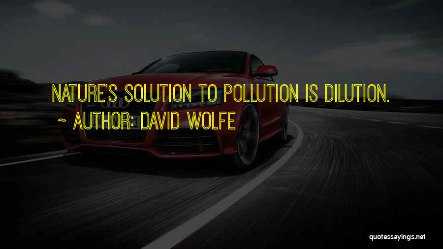 David Wolfe Quotes 87105
