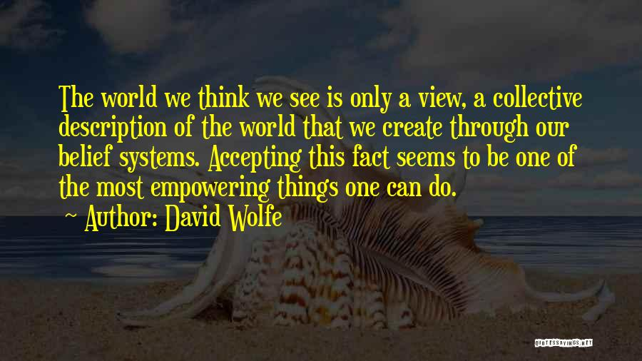 David Wolfe Quotes 965393