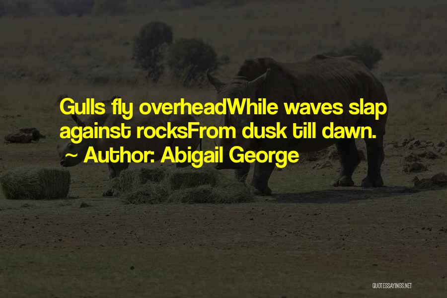 Dawn Till Dusk Quotes By Abigail George