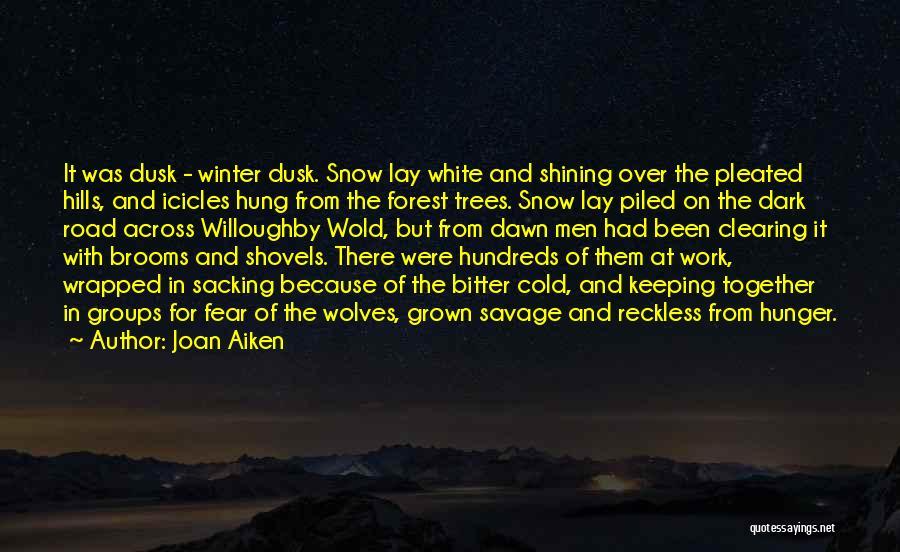 Dawn Till Dusk Quotes By Joan Aiken