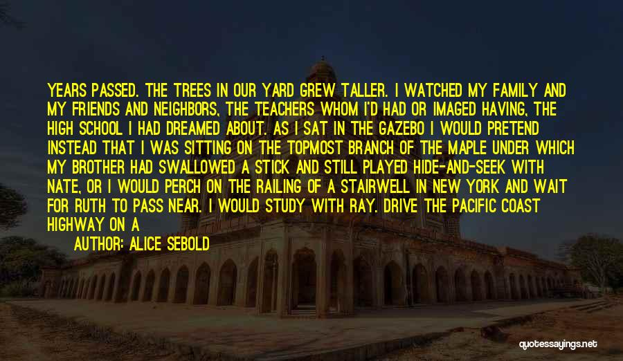 Day 1 Friends Quotes By Alice Sebold
