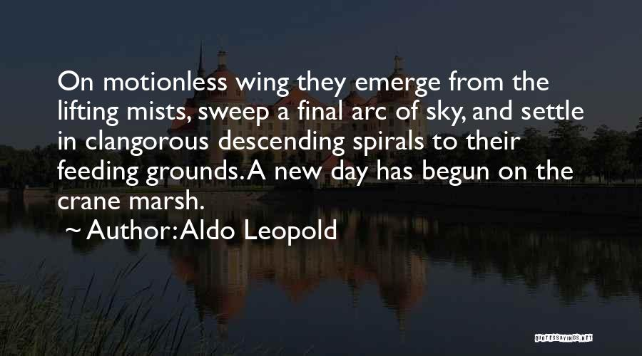 Day Wing Quotes By Aldo Leopold