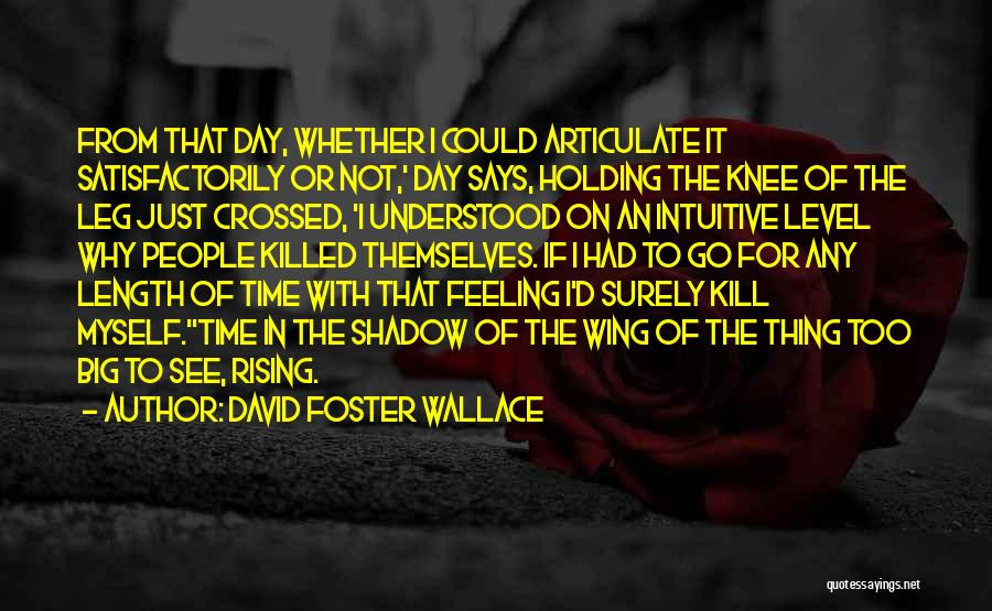 Day Wing Quotes By David Foster Wallace