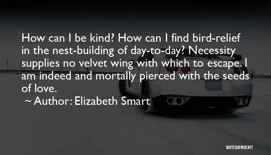 Day Wing Quotes By Elizabeth Smart