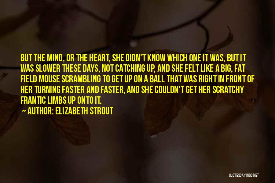 Days Are Going Faster Quotes By Elizabeth Strout
