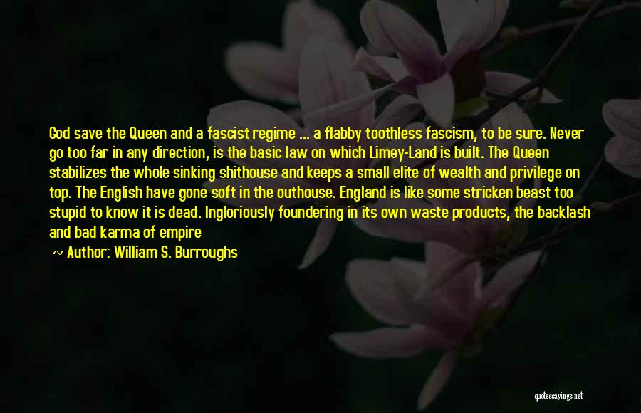 Dead And Stupid Quotes By William S. Burroughs