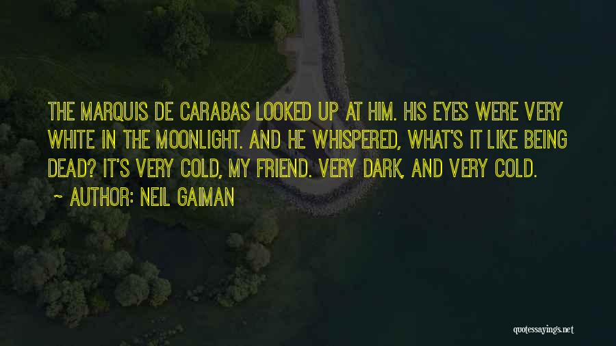Dead Friend Quotes By Neil Gaiman