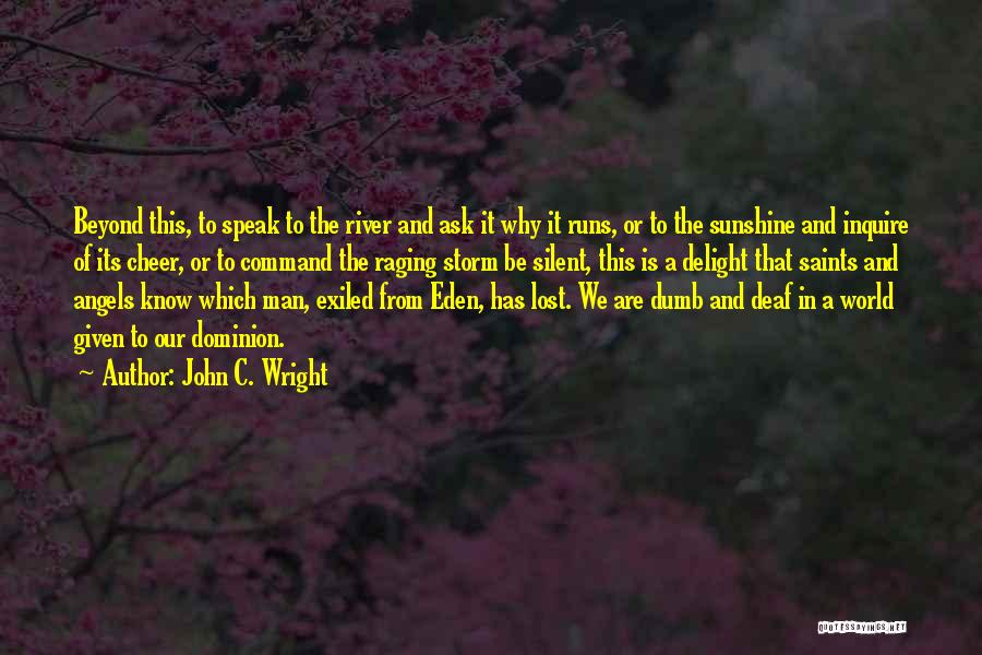 Deaf And Dumb Quotes By John C. Wright