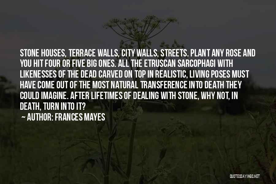 Dealing With Death Quotes By Frances Mayes