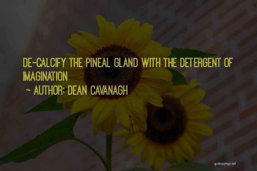 Dean Cavanagh Quotes 719069