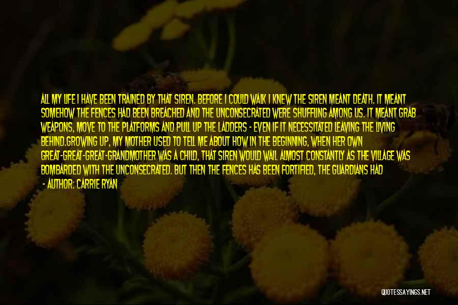 Death And Good Memories Quotes By Carrie Ryan