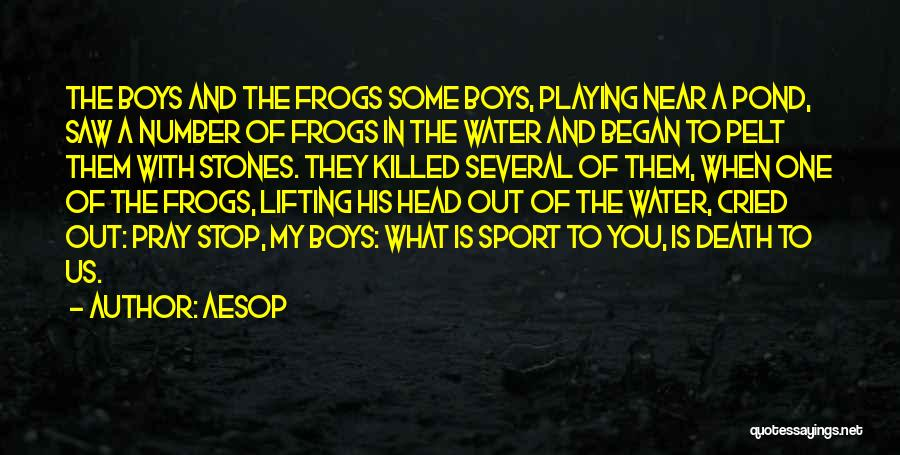 Death Head Quotes By Aesop