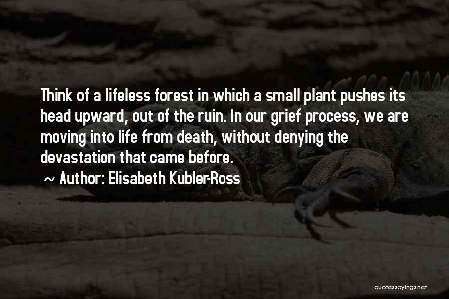 Death Head Quotes By Elisabeth Kubler-Ross