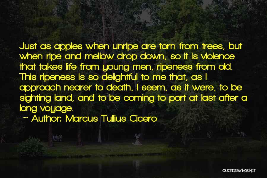 Death Is Coming Quotes By Marcus Tullius Cicero