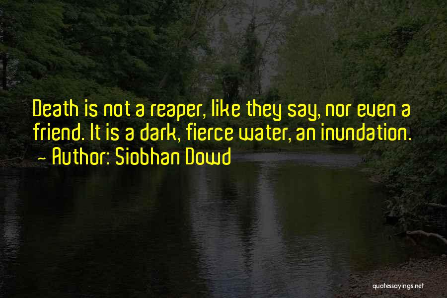 Death Reaper Quotes By Siobhan Dowd