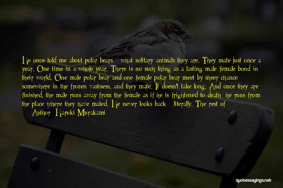 Death Take Me Away Quotes By Haruki Murakami