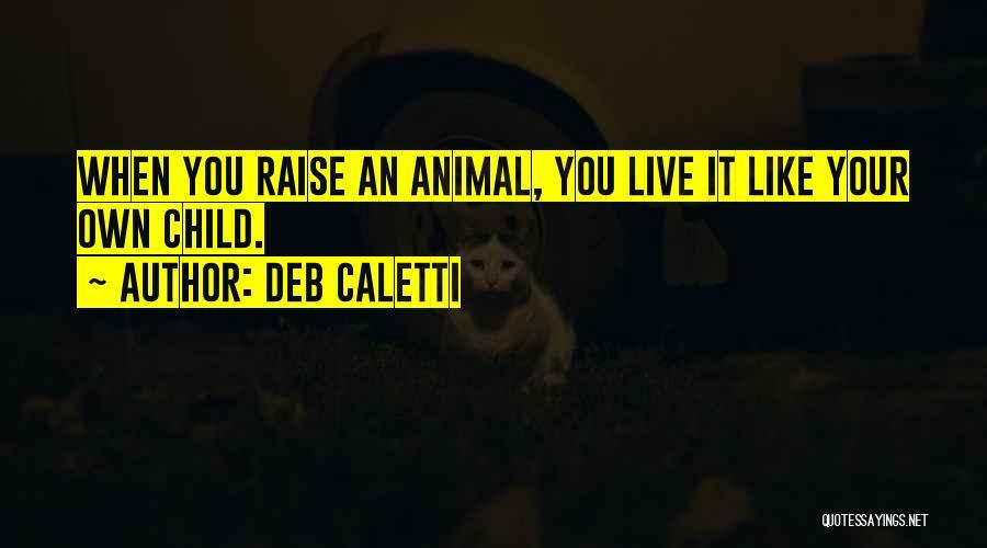 Deb Caletti Quotes 601649