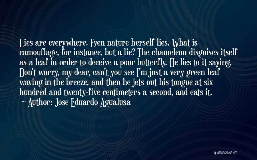 Deceive Quotes By Jose Eduardo Agualusa