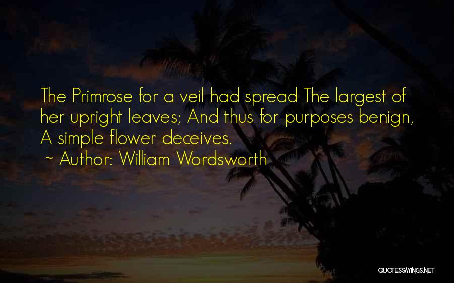 Deceives Quotes By William Wordsworth