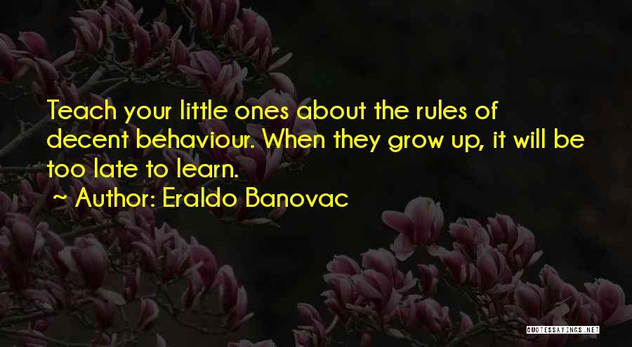 Decent Life Quotes By Eraldo Banovac