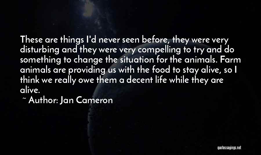 Decent Life Quotes By Jan Cameron
