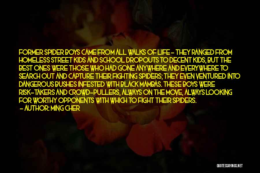 Decent Life Quotes By Ming Cher