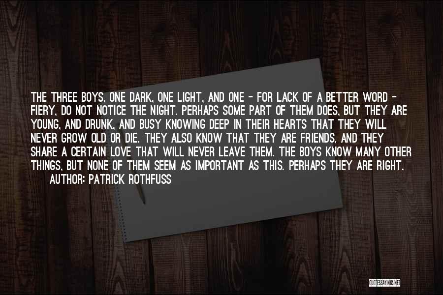 Deep Dark Love Quotes By Patrick Rothfuss