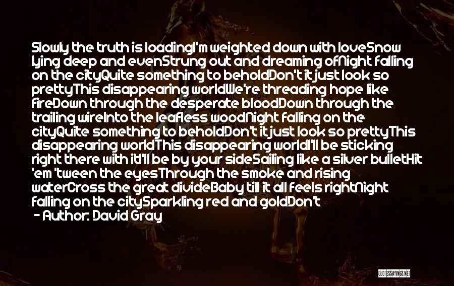 Deep Truth Quotes By David Gray