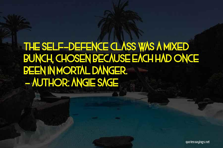 Defence Quotes By Angie Sage