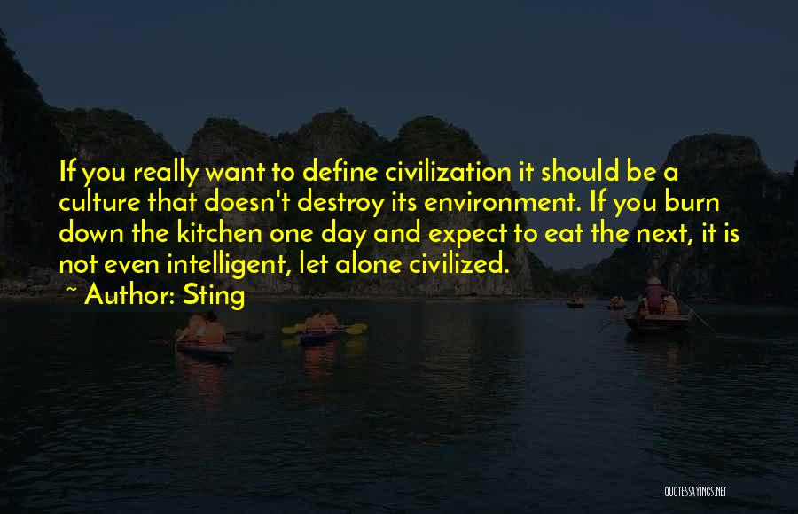 Define Culture Quotes By Sting