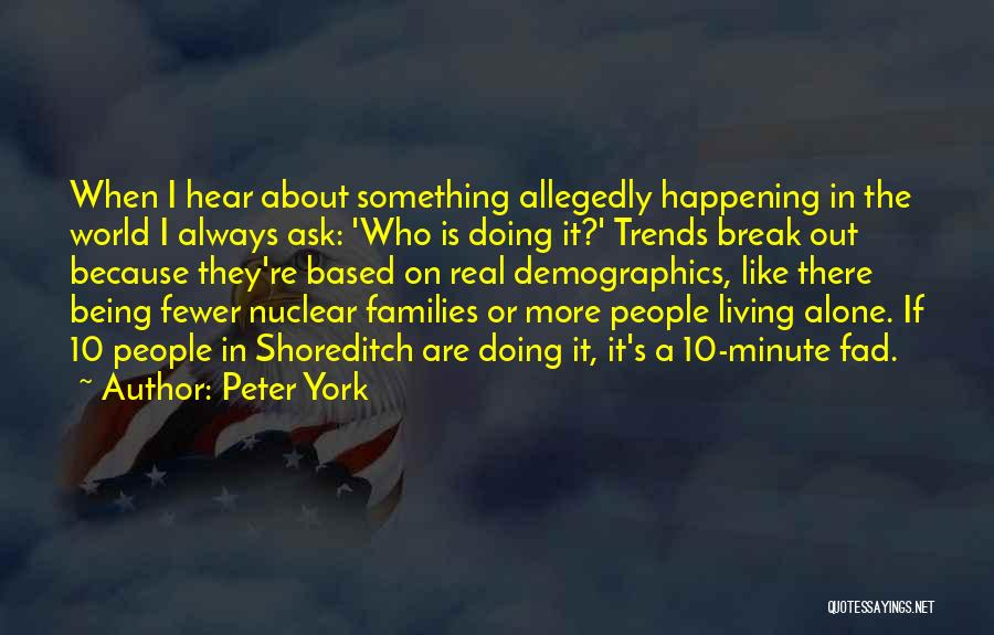 Demographics Quotes By Peter York