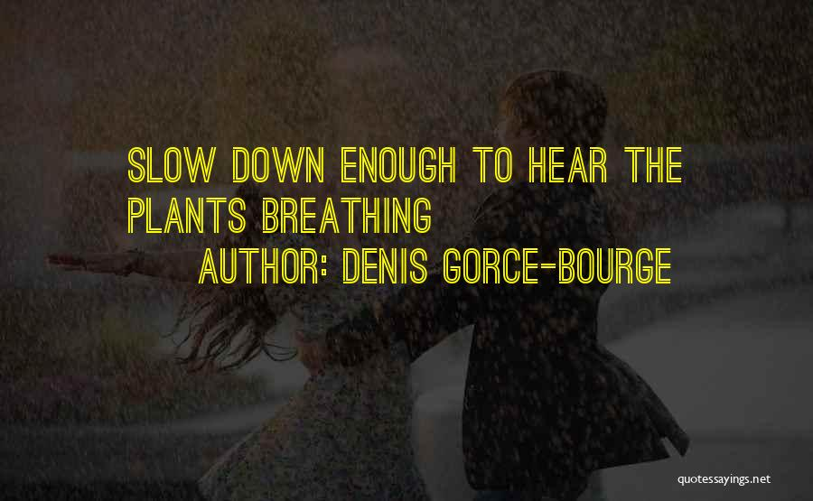 Denis Gorce-Bourge Quotes 502376