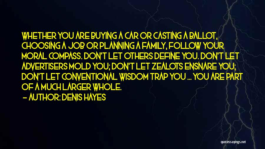 Denis Quotes By Denis Hayes