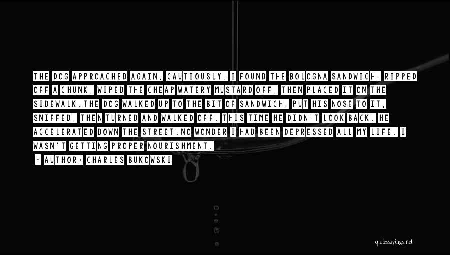 Depressed Life Quotes By Charles Bukowski
