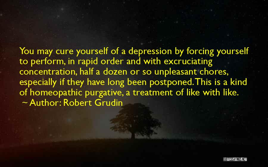 Depression Treatment Quotes By Robert Grudin