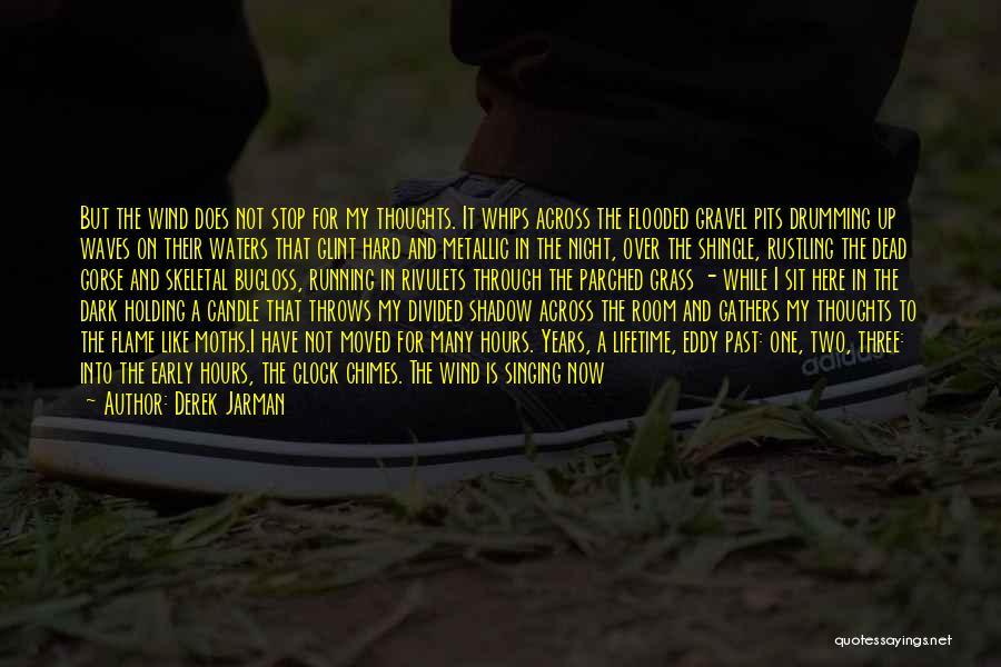 Derek Jarman Quotes 109597