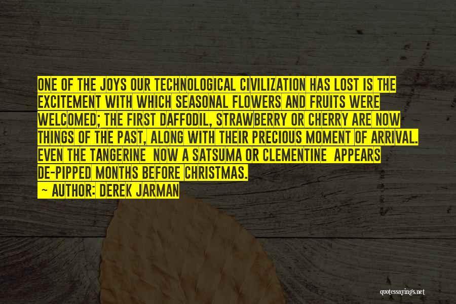 Derek Jarman Quotes 163573